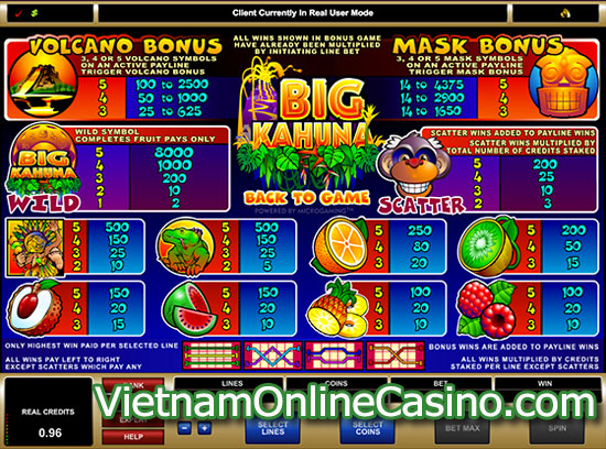 Big Kahuna Slot - Payline